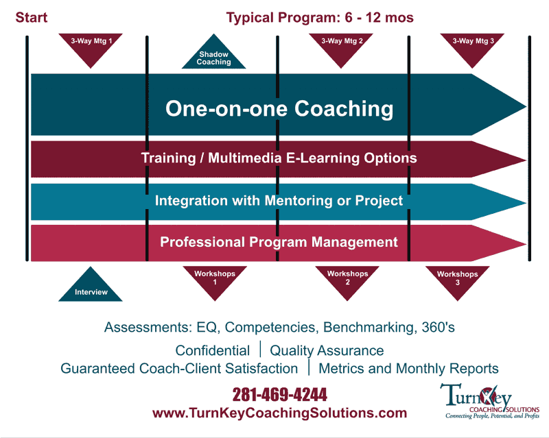 Professional Coaching Programs Options