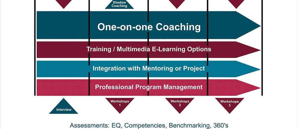 Emerging Leader Coaching Programs Options